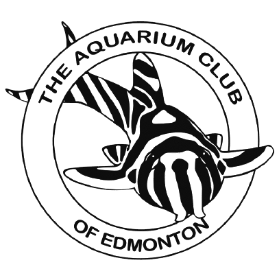 Aquarium Club of Edmonton (ACE)